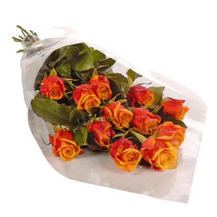 12 Τριαντάφυλλα - Πορτοκαλί 001106