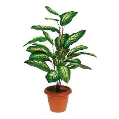 Τεχνητό φυτό - Ντιεφεμπάχια 310735