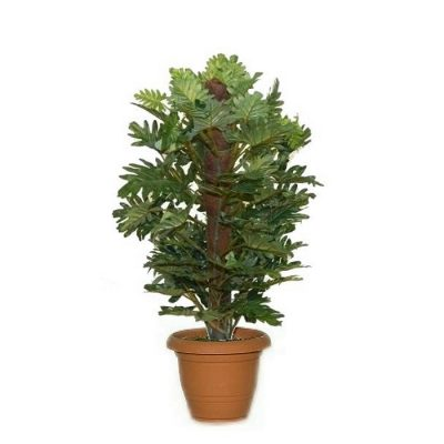 Artificial plant - Selum with stick 310750