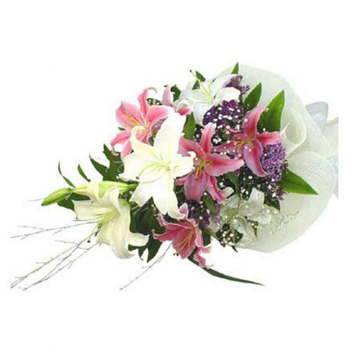 Fresh flowers Lilies - Stragazer - Oriental - Casablanca 00226