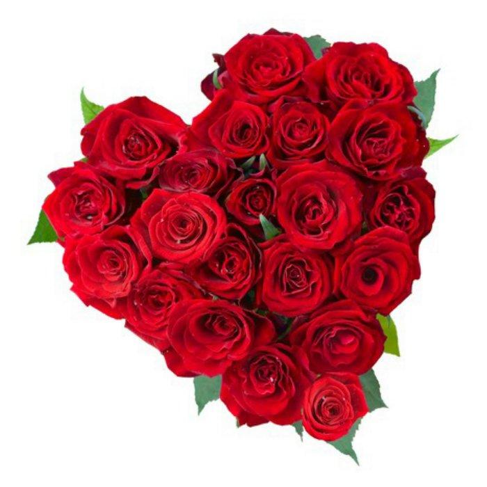 Τριαντάφυλλα Καρδιά 00161