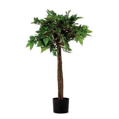 Artificial plant - Benjamin 311650
