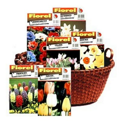 Bulbs in basket (fall planting)