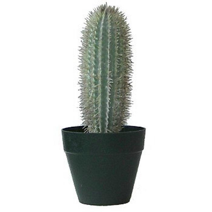 Τεχνητό φυτό - Κάκτος Y0670