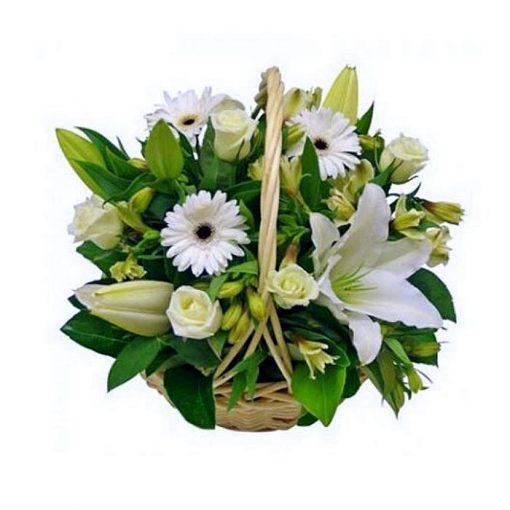 Fresh arrangement 00164