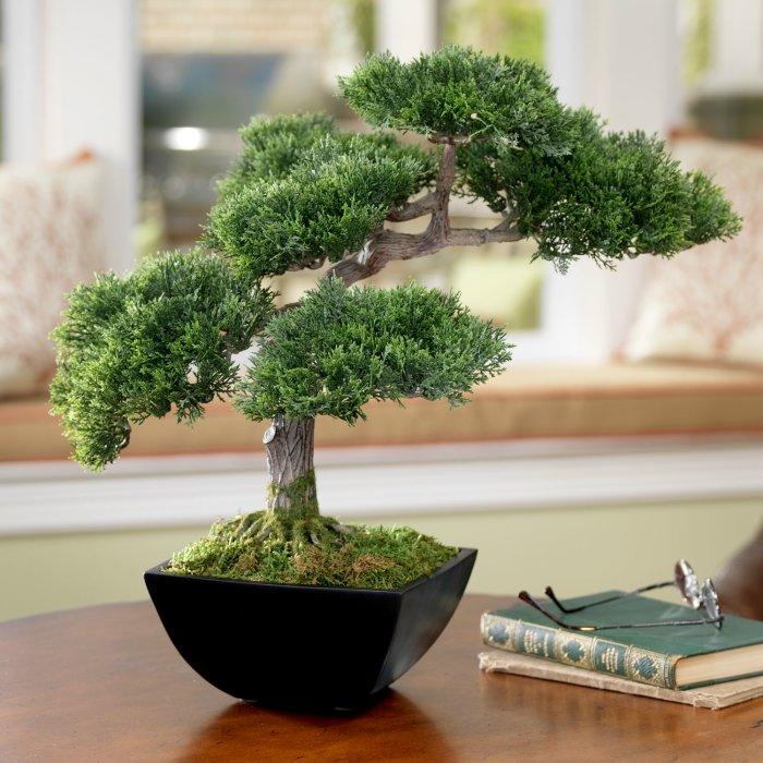 Τεχνητά φυτά Bonsai