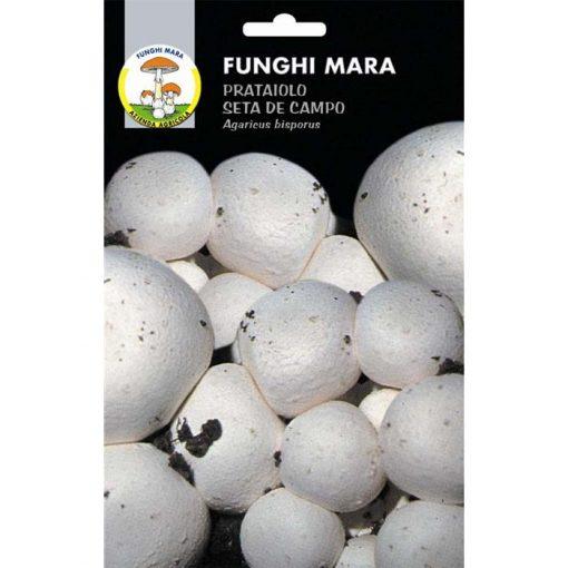 Edible mushroom seeds (micelium) M01 PRATAIOLO (Agaricus Bisporus)