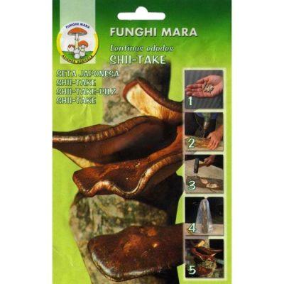 Σπόροι φαγώσιμων μανιταριών M12 SHII-TAKE (Lentinus Edodes)