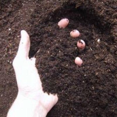 Planting Soils