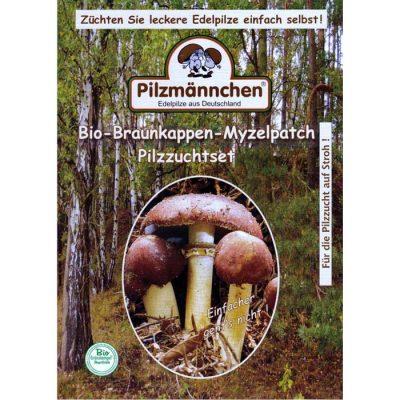 Σπόροι φαγώσιμων μανιταριών KING WINE CAP STROPHARIA (Stropharia rugoso-annulata)
