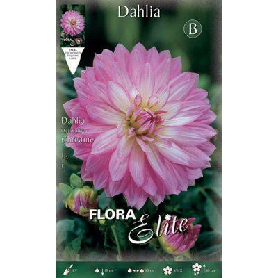 613623 Dahlia Christine