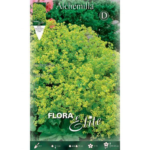 788697 Alchemilla - Αλχεμίλα Mollis