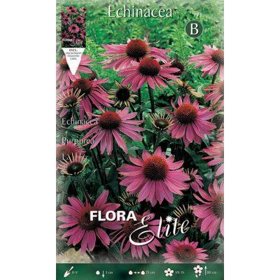 009242 Echinacea - Εχινάτσεα Purpurea
