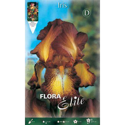 829222 Iris Bronze