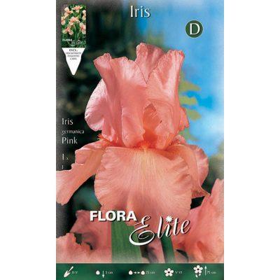 830273 Iris Pink