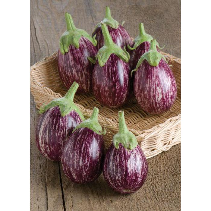 13803 Calliope F1 Μελιτζάνα - Solanum melongena