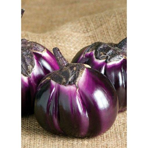 13804 Barbarella Μελιτζάνα - Solanum melongena