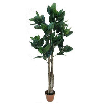 Artificial plant – Ficus Robusta 311900