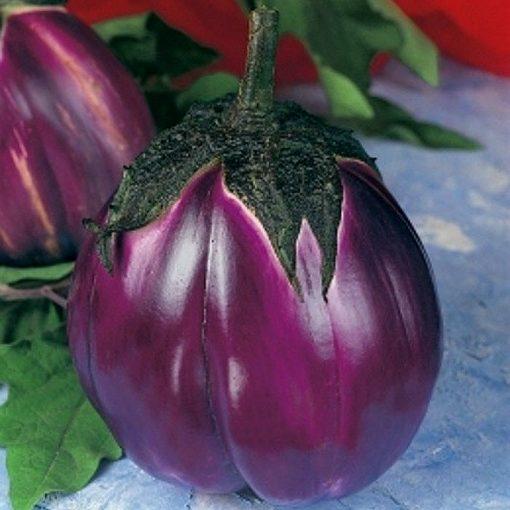 PR 7905 Violetta di Firenze - Μελιτζάνα - Solanum melongena