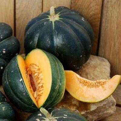 DF 6015 Noire des Carmes – Πεπόνι (Cucumis melo)