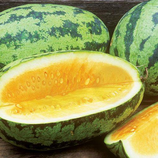DF 6112 Orangeglo - Καρπούζι (Citrullus lanatus)