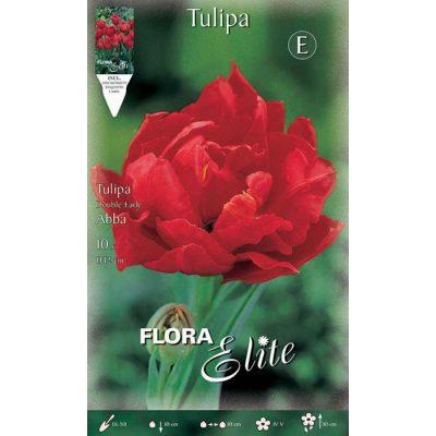 212802 Tulipa - Τουλίπα Abba