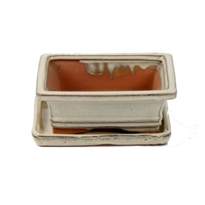 A3150001 Bonsai ceramic set (pot – plate) Choukaku (Ractangle)