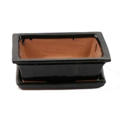 A3200004 Bonsai ceramic set (pot – plate) Choukaku (Ractangle)