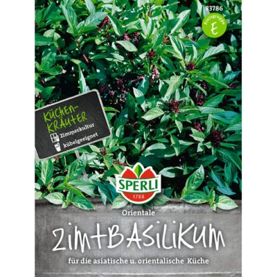 83786 - Ocimun basilicum var. cinnamomum