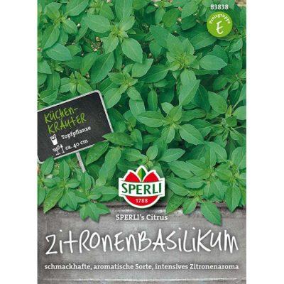 83838 - Βασιλικός λεμονάτος - Ocimun basilicum