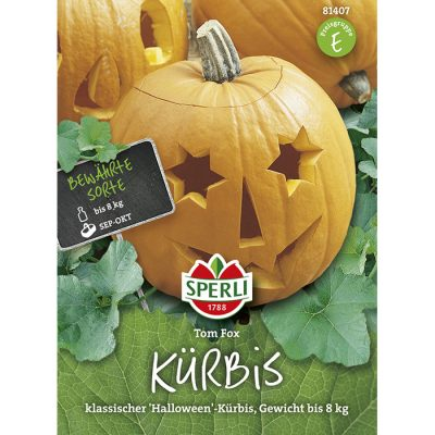 "81407 - Cucurbita pepo ""Halloween Tom Fox"""