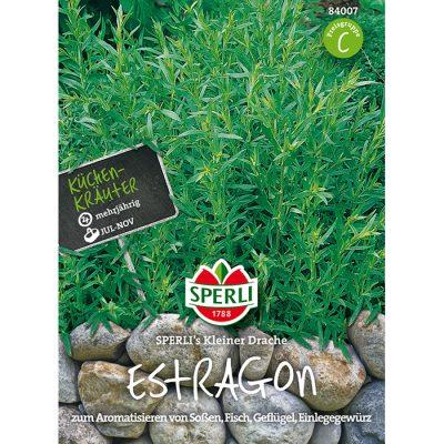 84007 - Εστραγκόν - Artemisia dracunculus