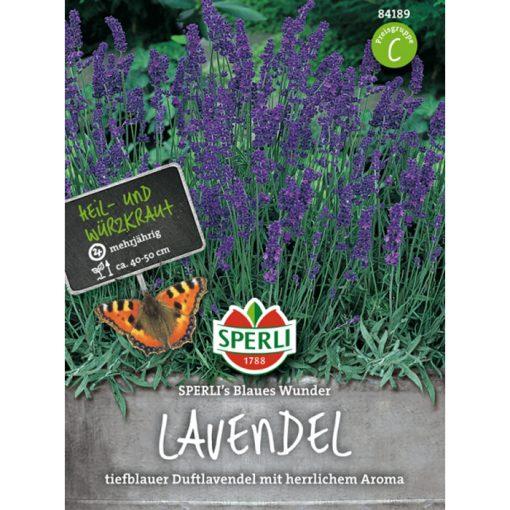 84189 - Λεβάντα - Lavandula angustifolia