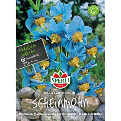 86122 - Meconopsis betonicifolia
