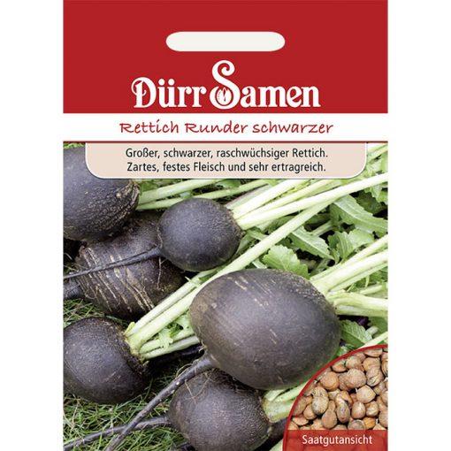 DS0053 - Ραπάνι μαύρο - Raphanus sativus