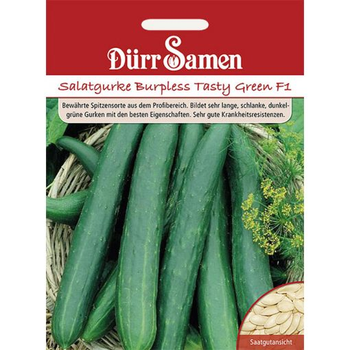 "DS0903 - Αγγούρι - Cucumis sativus ""Tasty Green F1"""