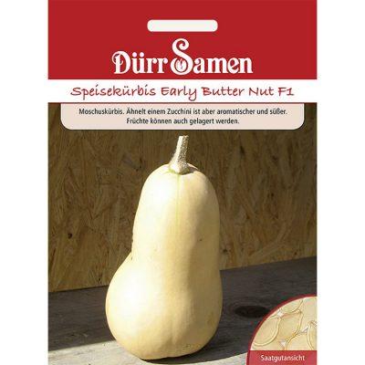 "DS0914 - Κολοκύθα βουτυράτη - Cucurbita moschata ""Butter Nut F1"""