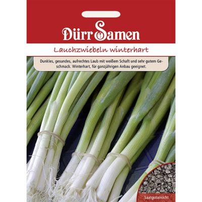 DS0983 - Allium fistulosum