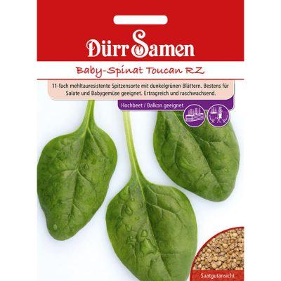"""DS4252 - Σπανάκι μπέιμπι - Spinacia oleracea """"Baby Toucan RZ"""""""