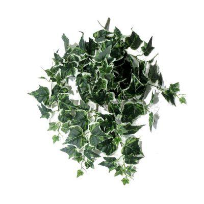 Τεχνητό κρεμαστό φυτό – Κισσός Δίχρωμος x 120 φύλλα 310495