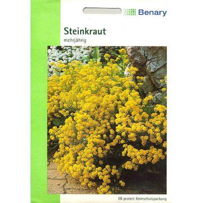 A4390 - Άλυσσο κίτρινο - Alyssum saxatile