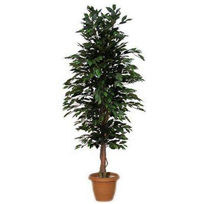 Artificial plant – Benjamin green 313700