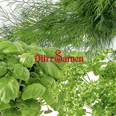 Σπόροι βοτάνων και αρωματικών φυτών DÜRR SAMEN