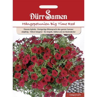 "DS1093 - Petunia hybridica ""Big Time Red"""