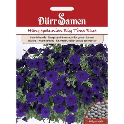 "DS1982 – Petunia hybridica ""Big Time Blue"""