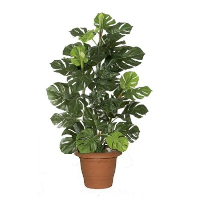 Artificial plant – Monstera 311100