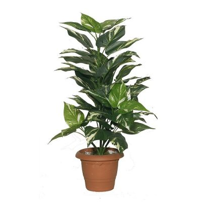 Artificial plant – Pothos 311100