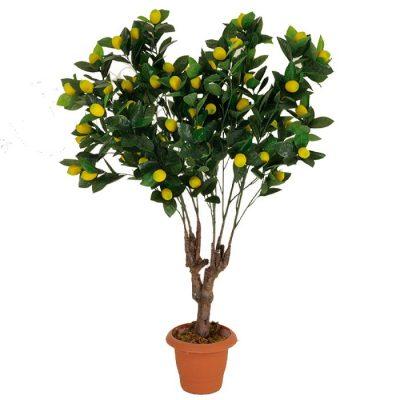Τεχνητό φυτό – Λεμονιά 311950