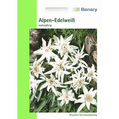 R0280 - Εντελβάις - Leontopodium alpinum