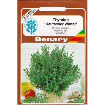 Z9170 - Thymus vulgaris